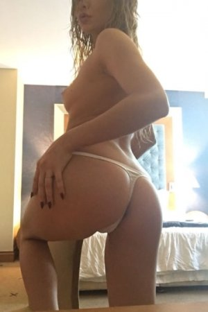 Elifsu nuru massage in Mesa
